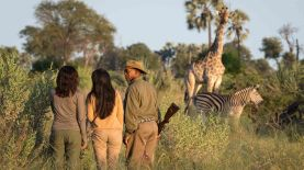 botswana-walking-safari-dana-allen